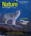 Nature Sauvage Automne 2012