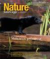 Nature Sauvage Automne 2013