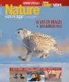 Nature Sauvage Hiver 2014
