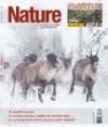 Nature Sauvage hiver 2016