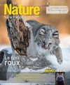Nature Sauvage hiver 2019