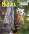 Nature Sauvage automne 2020
