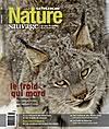 Nature Sauvage Hiver 2008